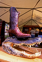 Stock photo of an alligator-skin cowboy boot resting on an ominous-looking head at the Texas Gatorfest in Anhuac.