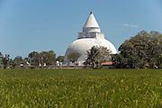 A Buddhist dagoba at Tissamaharama in south-eastern Sri Lanka.