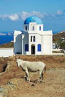 Grece, Cyclades, ile de Folegandros, eglise de Agios Ioanis Prodromos // Greece, Cyclades islands, Folegandros, Agios Ioanis Prodromos church