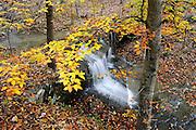 Bear Cave Hollow waterfall, Buffalo National River, Arkansas.