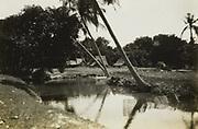 Kali op Java, 1928 - 1932