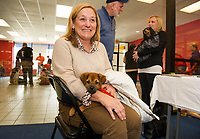 """Pumpkin"" a mixed breed puppy sits contently on Nancy Porosky's lap awaiting adoption approval during Friday's Adopt a thon with the NH Humane Society at the Belknap Mall.  (Karen Bobotas/for the Laconia Daily Sun)"