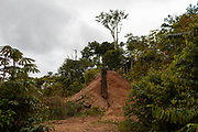 Vegetation gains space on an old gravel mound used to place a separation ramp for gold sediments in San Jose de Kareme, a town in the mining corridor in the Peruvian Amazon.