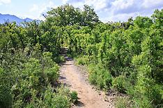 Sam Nail Ranch