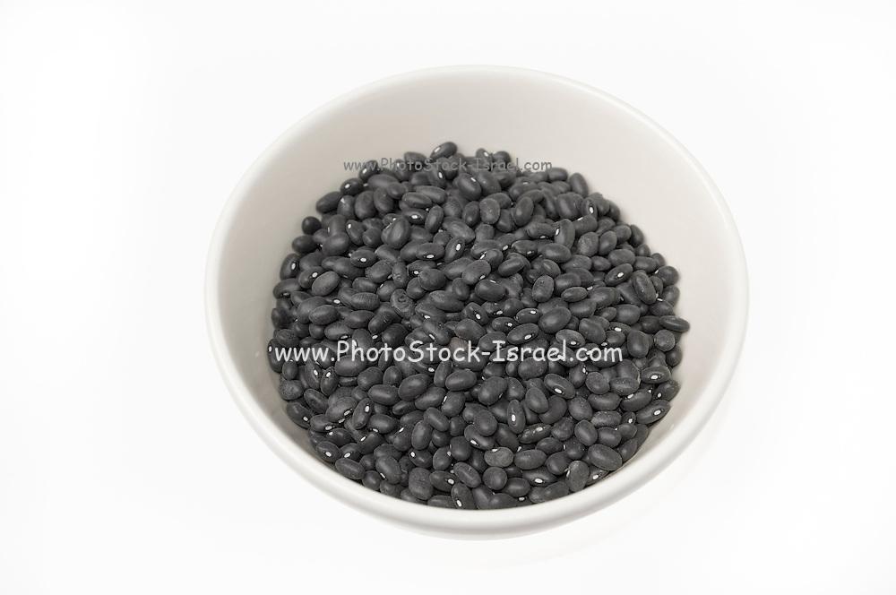 Black turtle beans on white background