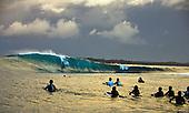 Shark Island Bodyboard