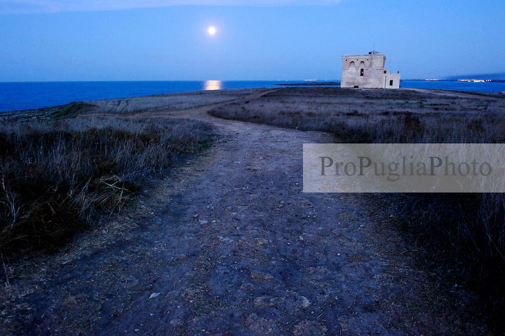 Oasi di Torre Guaceto (Brindisi)