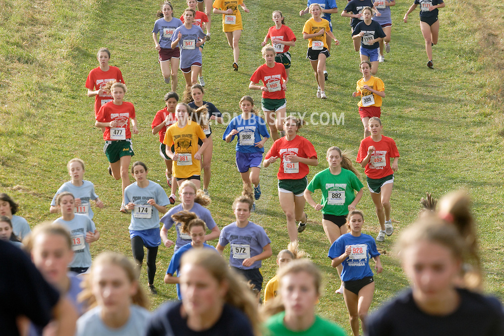 Warwick, N.Y. - Runners climb a hill during the  girls' Class AA race at the New York State Public High School Athletic Association championships at Sanfordville Elementary School on Nov. 11, 2006.<br />