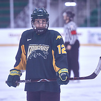 3rd year forward, Chelsea Hallson (12) of the Regina Cougars during the Women's Hockey Away Game on Fri Jan 11 at University of Saskatoon. Credit: Arthur Ward/Arthur Images