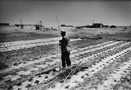 """Mongol farmer prepares to erect stakes to support young bean plants.  Plastic sheeting is laid to seal in precious water.  Tongu-lugu-lar village, which until the policies of the Great Leap Forward, can be seen in the background inundated with sand.  A deep well, (seen beside tripod structure on the background left) is all that keeps the village alive.  Beijing has laid down a line in the desert sand in a stuggle to halt the advance of the Gobi Desert called """"Taming the Yellow Dragon"""" as China's Environmental Agency says that the Gobi Desert expanded 52,400 square km. (20,240 square miles) from 1994 to 1999, about half the size of the state of Pennsylvania."""