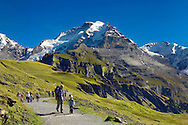 Grindelwald First - Group of hikers - Bernese Alps - Switzerland .<br /> <br /> Visit our SWITZERLAND  & ALPS PHOTO COLLECTIONS for more  photos  to browse of  download or buy as prints https://funkystock.photoshelter.com/gallery-collection/Pictures-Images-of-Switzerland-Photos-of-Swiss-Alps-Landmark-Sites/C0000DPgRJMSrQ3U