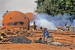 Coal Making