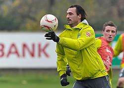 19.11.2010, Trainingsgelaende Werder Bremen, Bremen, GER, 1. FBL, Training Werder Bremen, im Bild Hugo Almeida (Bremen #23)   EXPA Pictures © 2010, PhotoCredit: EXPA/ nph/  Frisch+++++ ATTENTION - OUT OF GER +++++