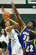 Clearview at Elyria Catholic boys high school varsity basketball on Dec. 18, 2015. Images © David Richard and may not be copied, posted, published or printed without permission.<br /> @DavidRichardPix