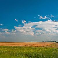 A straight and lonely road divides wheat fields in southern Manitoba, Canada.