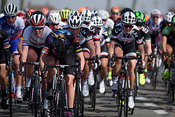 Alena Amialiusik pushes the pace at Women's Gent Wevelgem 2017. A 145 km road race on March 26th 2017, from Boezinge to Wevelgem, Belgium. (Photo by Sean Robinson/Velofocus)