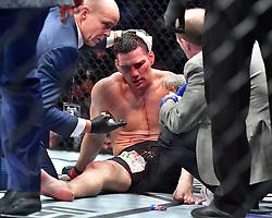 "Nov 12, 2016 - New York, New York, U.S. - Chris ""The All-American"" Weidman (red gloves) vs. Yoel ""Soldier of God"" Romero (blue gloves) during UFC 205 at Madison Square Garden. (Credit Image: © Jason Silva via ZUMA Wire)"