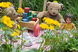 © Licensed to London News Pictures. 19/05/2013. London, England. Pictured: A teddybear's picnic in the NSPCC Garden of Magical Childhood. RHS Chelsea Flower Show prepares for the openting to the public on Tuesday. Photo credit: Bettina Strenske/LNP