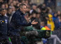 Football - 2018 / 2019 Emirates FA Cup - Sixth Round, Quarter Final : Millwall vs. Brighton<br /> <br /> Neil Harris, Manager of Millwall FC, blasts instructions to his team from the touchline at The Den.<br /> <br /> COLORSPORT/DANIEL BEARHAM