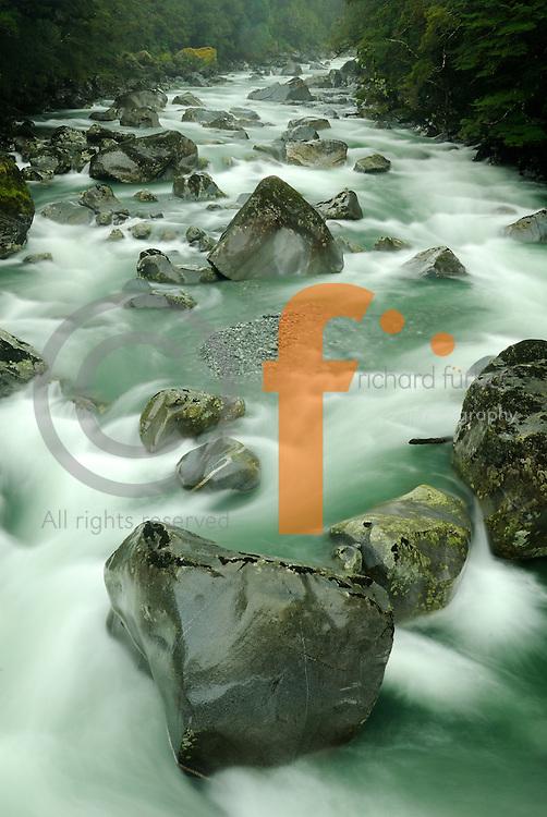 Richard Furhoff 100101_NewZealand_DSC4567_1.tif .Swollen Creek near Milford Sound. Fiordlands National Park, New Zealand..
