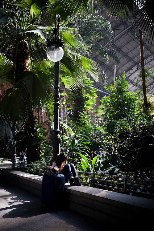 Atocha Station in Madrid, Spain. It has a huge jungle inside.