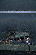 """This is a photograph from the """"Pollution in Abstract"""" series. The images are all straight compositions of pollutants (oil, gasoline, etc.) in storm water that can been seen on streets and parking lots on rainy days."""
