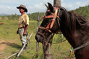 Nicolas Martinez, 86, checks to see if any of his horses were stolen after finding the barbed wire around his property in Alemanha, Honduras was cut during the night.  Honduras is considered the third poorest country in the Western Hemisphere (Haiti, Nicaragua). With over 50% of the population living below the poverty line and 28% unemployed, Hondurans frequently turn to illegal immigration as a solution to their desperate situation. The Department of Homeland Security has noted an 95% increase in illegal immigrants coming from Honduras between 2000 and 2009, the largest increase of any country.