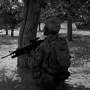 Sep 06, 2009 - Golestan District, Farah Province, Afghanistan - A US Marine from the 2nd MEB of the 2/3 Marines takes cover behind trees just outside a village in Golestan in Farah Province, where US Marines have been locked in a bitter counterinsurgency campaign and conflict with insurgents using mainly Improvise Explosive Devices (IED's). (Credit Image: © Louie Palu/ZUMA Press)
