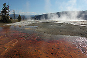 Mammoth Hot Springs Detail, Yellowstone National Park, Wyoming