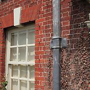 Georgian Facade Brick & Dead Vine -Salisbury, UK