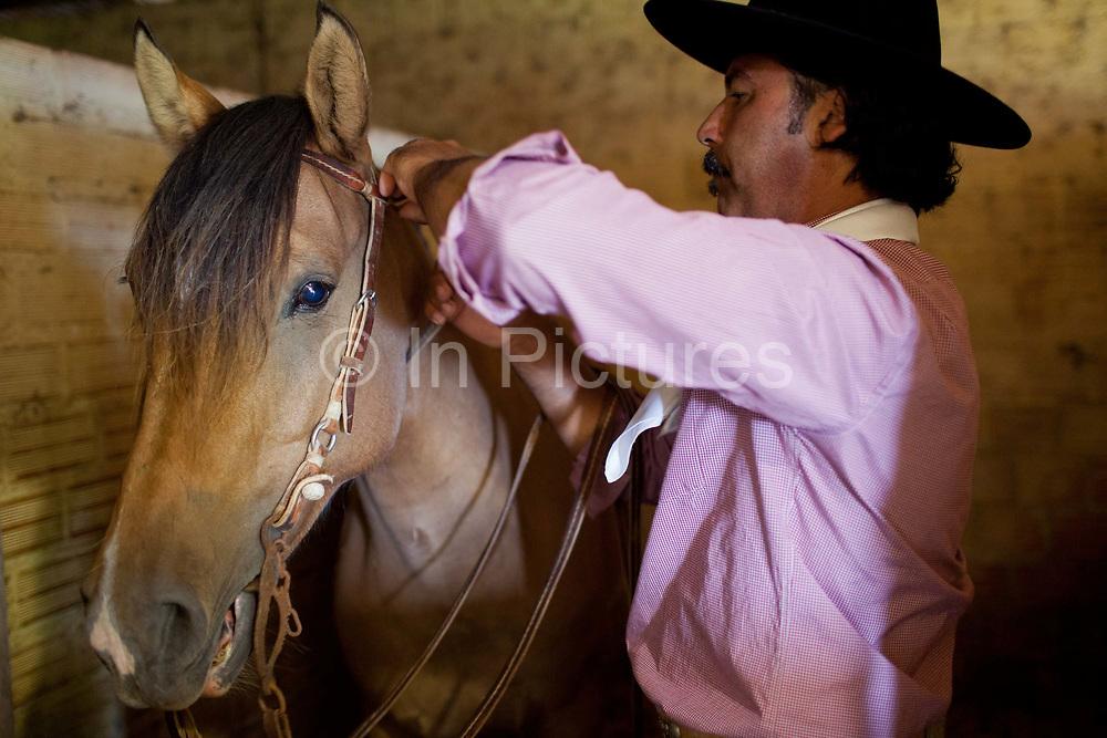 Brazilian male Gaucho cowboy saddling up his horse in a stable. Working Gaucho Fazenda in Rio Grande do Sul, Brazil.
