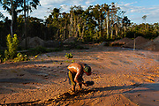 A miner collects sediment with a tray to check if there is still a chance of finding gold in the area where they have been working for several days in the Peruvian Amazon.