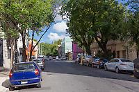 CASA AMUEBLADA DE DOS PISOS Y CON JARDIN Y PILETAEN EL BARRIO DE PALERMO VIEJO, CIUDAD AUTONOMA DE BUENOS AIRES, ARGENTINA (PHOTO BY © MARCO GUOLI - ALL RIGHTS RESERVED)