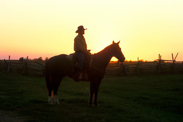 Cowboy on his horse at sunset
