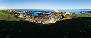 A digital panoramic scenic view near Stanford University's Hopkins Marine Station in Pacific Grove, California, photographed on February 23, 2016. (Stan Olszewski/SOSKIphoto for Hakai Magazine)
