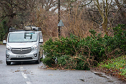 © Licensed to London News Pictures. 15/01/2020. London, UK. Clearing up after last night's storms builders working locally help remove a fallen tree blocking a road in Motspur Park, South London. A tree also fell on to tracks  between Chessington and Motspur Park causing delays on SWR for Commuters heading to Waterloo Station. There was a gloomy start for commuters heading to London this morning as more rain and high winds are expect for Thursday 16/01/2020. Photo credit: Alex Lentati/LNP