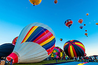 Hot air balloons lifting off from Balloon Fiesta Park around sunrise, Albuquerque International Balloon Fiesta, Albuquerque, New Mexico USA.