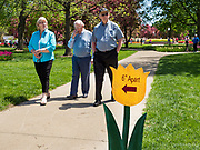 """03 MAY 2020 - PELLA, IOWA: A sign encourages people to """"social distance"""" in a park in downtown Pella, Iowa. Pella is a small community in central Iowa. The town's economy is driven by tourism and the Tulip Festival, the largest tourist event of the year, has already by canceled for 2020 because of fears that the festival could become a COVID-19 (Coronavirus/SARS-CoV-2) """"Super Spreader"""". The Governor of Iowa reopened 77 of Iowa's 99 counties. The counties that were reopened have reported low incidences of Coronavirus. Marion County, where Pella is located, has reported 12 cases of Coronavirus. There have been 9,169 confirmed cases of Coronavirus in Iowa, including 1,476 cases in the Des Moines area, less than one hour away. Many people from Des Moines drove to Pella this weekend to see the tulips for which the town is famous.     PHOTO BY JACK KURTZ"""