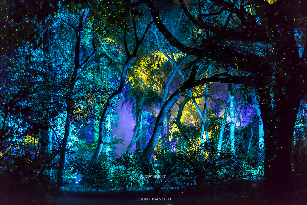 Enchanted Forest exhibit at Night, Descanso Gardens