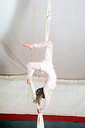 Female Aerialist acrobat performs in the air on fabric