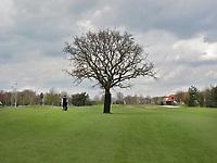 TILBURG - Boom op hole 9 , Golfbaan Prise d'Eau bij Tilburg. FOTO KOEN SUYK
