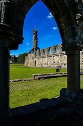 The ruins of St Andrews Cathedral, Fife, Scotland<br /> <br /> (c) Andrew Wilson | Edinburgh Elite media