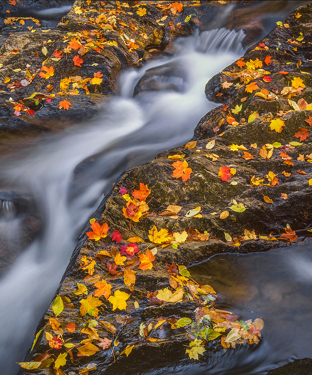 Notch Brook cascades in fall with leaves on rocks, detail shot, Lowell, VT