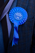 General election 2015. West Kilbride, Scotland. Conservative party rosette, detail