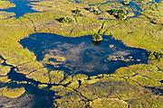 Aerial view of Okavango Delta, Botswana.