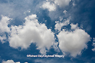 63891-02502 Cumulus clouds in blue sky, Marion Co., IL