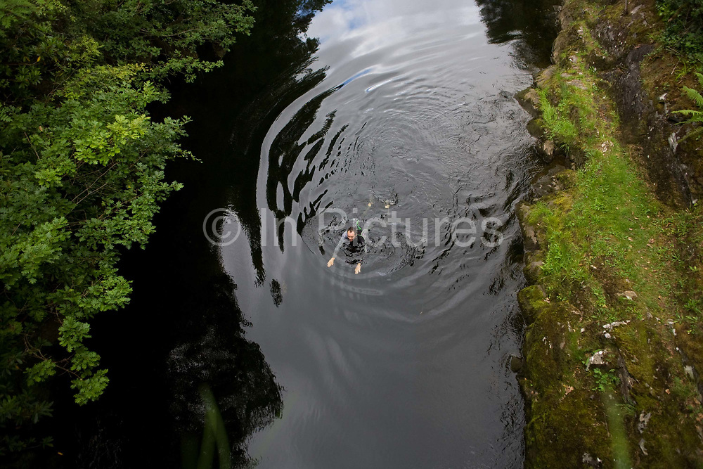 A wild bather swims the breast stroke in mountain waters of River Shiel in Moidart on the Ardnamurchan peninsular, Western Scotland. Viewed from a high viewpoint, an aerial perspective from a nearby bridge, we see the man having entered the water from rocks, and out into the current which will take him under the bridge and into a wider channel. Ripples expand outwards from the man. The water is pure and clean, having come from mountain streams and springs, if a little cold. But the swimmer is wearing a wetsuit to protect him from the chill. It is a near-perfect place that is largely secret from outsiders.