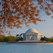 Jefferson Memorial In Washington DC during Cherry Blossom festival
