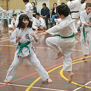 First TKD Sept 2019 - white, yellow tip, yellow and green tip gradings