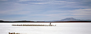 Miner working on Salar de Uyuni salt flats, Potosi, Bolivia. The Salar de Uyuni are the worlds largest salt flats.